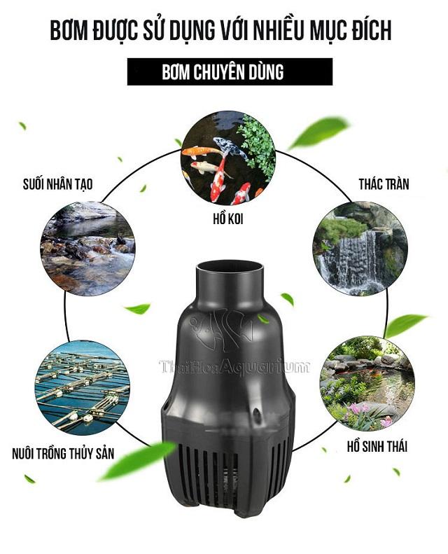 Hình ảnh Sử dụng cho hồ koi - thác nước - hệ thống thủy hải sản