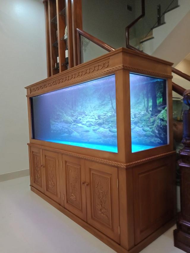 Hình ảnh bể cá rồng cao cấp Thái Hòa Aquarium