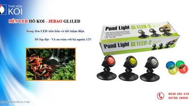 Photo of Đèn Led hồ Koi Jebao GL1LED -3