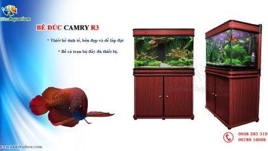 Hình ảnh Bể cá đúc Trung Quốc Camry R3