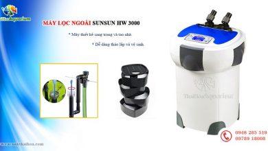 Photo of Lọc ngoài External Filter Sunsun HW-3000 cho bể 120cm-150cm-180cm