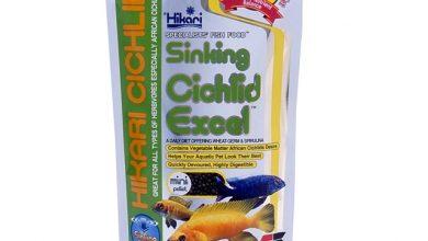 Photo of Thức ăn cá Ali – Hikari Sinking Cichlid Excel 342g