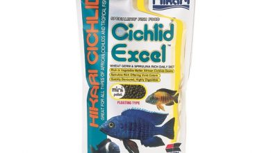 Photo of Thức ăn cá Ali – Hikari Cichlid Excel 250g
