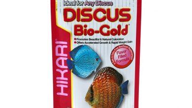Photo of Thức ăn cá Đĩa – Hikari Discus Bio-Gold 80g (Hạt Chìm)