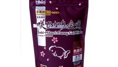 Photo of Thức ăn cá Vàng – Saki Hikari Fancy Goldfish 200g (Tăng Màu – Hạt Chìm)