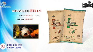 Photo of Thức Ăn Cá Koi Tăng Màu Saki-Hikari Color Enhancing 15kg (Hạt Nổi)