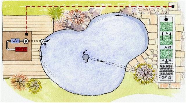 Hình ảnh Phác thảo hồ koi