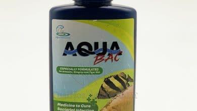 Photo of Thuốc chữa bệnh cá Rồng – Hổ – Sam Aqua Bac (Thái Lan)