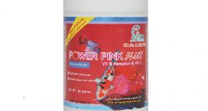 Hình ảnh chai Power Pink tăng màu cá rồng