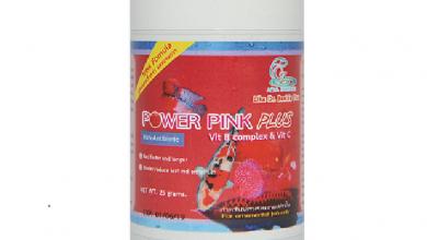 Photo of Thực Phẩm Tăng Màu Cá Rồng Power Pink- 25g