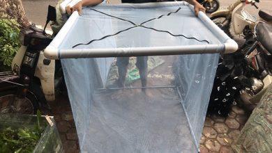Photo of Lồng Cách Ly Cá Koi 80cmx80cmx80cm và 1mx1mx1m