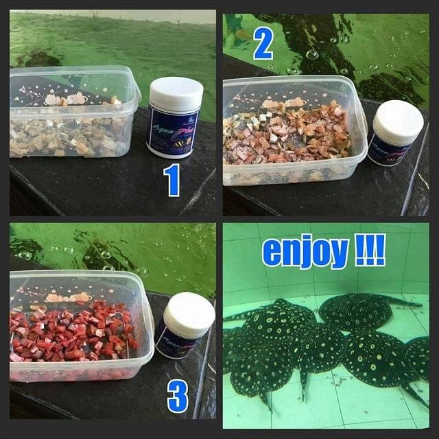 Hình ảnh Vitamin cho cá Rồng - Hổ - Sam