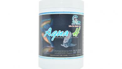 Photo of Thuốc chống shock nước và cấp cứu khẩn cấp cho cá rồng Aqua H