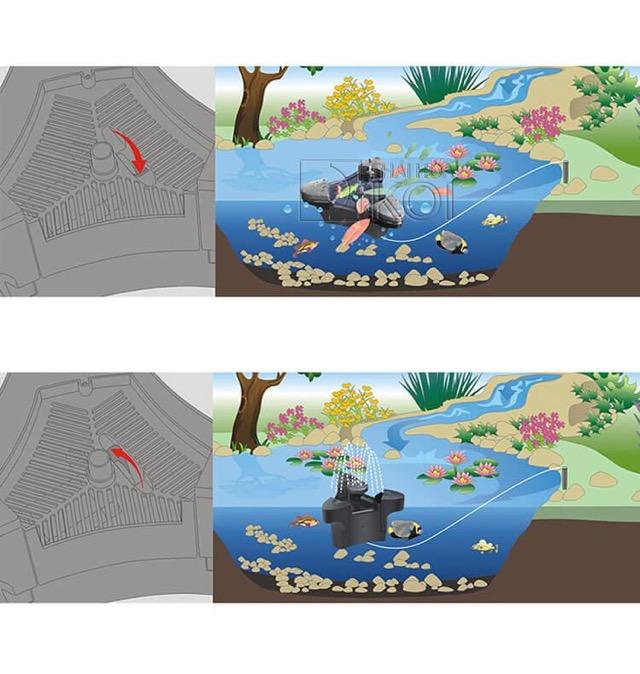 Hình ảnh Hiệu quả cho hồ ngoài trời - hồ Koi
