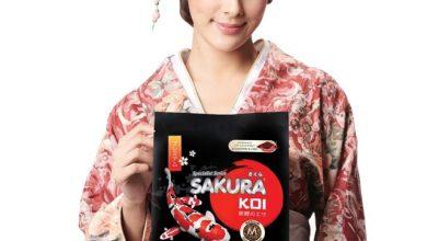 Hình ảnh Thức Ăn Cá Koi Tăng Màu Sakura - Color Boosting