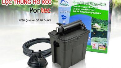 Photo of Lọc Thùng Hồ Koi MultiClear Set 5000-8000-15000 – Pontec, Đức