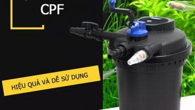 Lọc Thùng Hồ Koi SunSun CPF