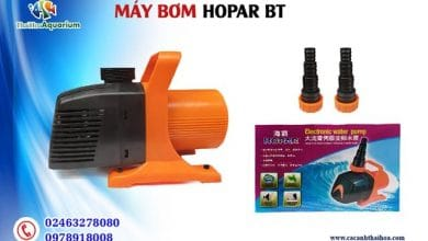 Photo of Máy Bơm Bể Cá Cảnh Hopar BT -8000-10000-13000-15000-18000-20000 L/H
