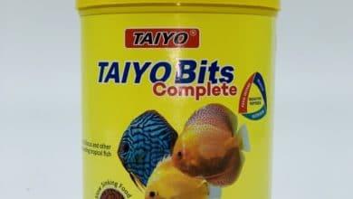 Hình ảnh Thức Ăn Cá Đĩa Taiyo Bits